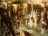 Krk: špilja Biserujka