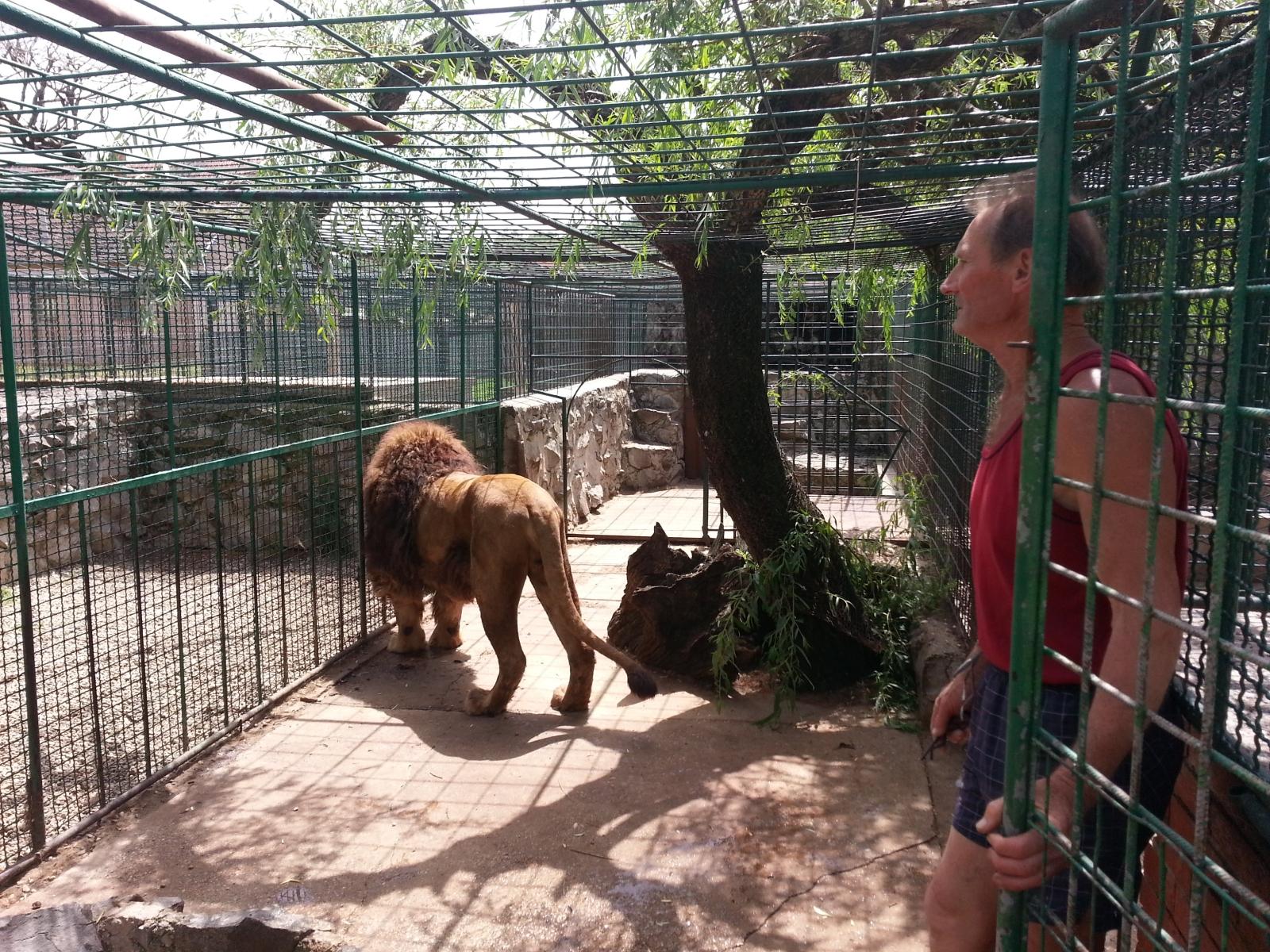 Slavonija: Našice: Zoološki vrt Bizik