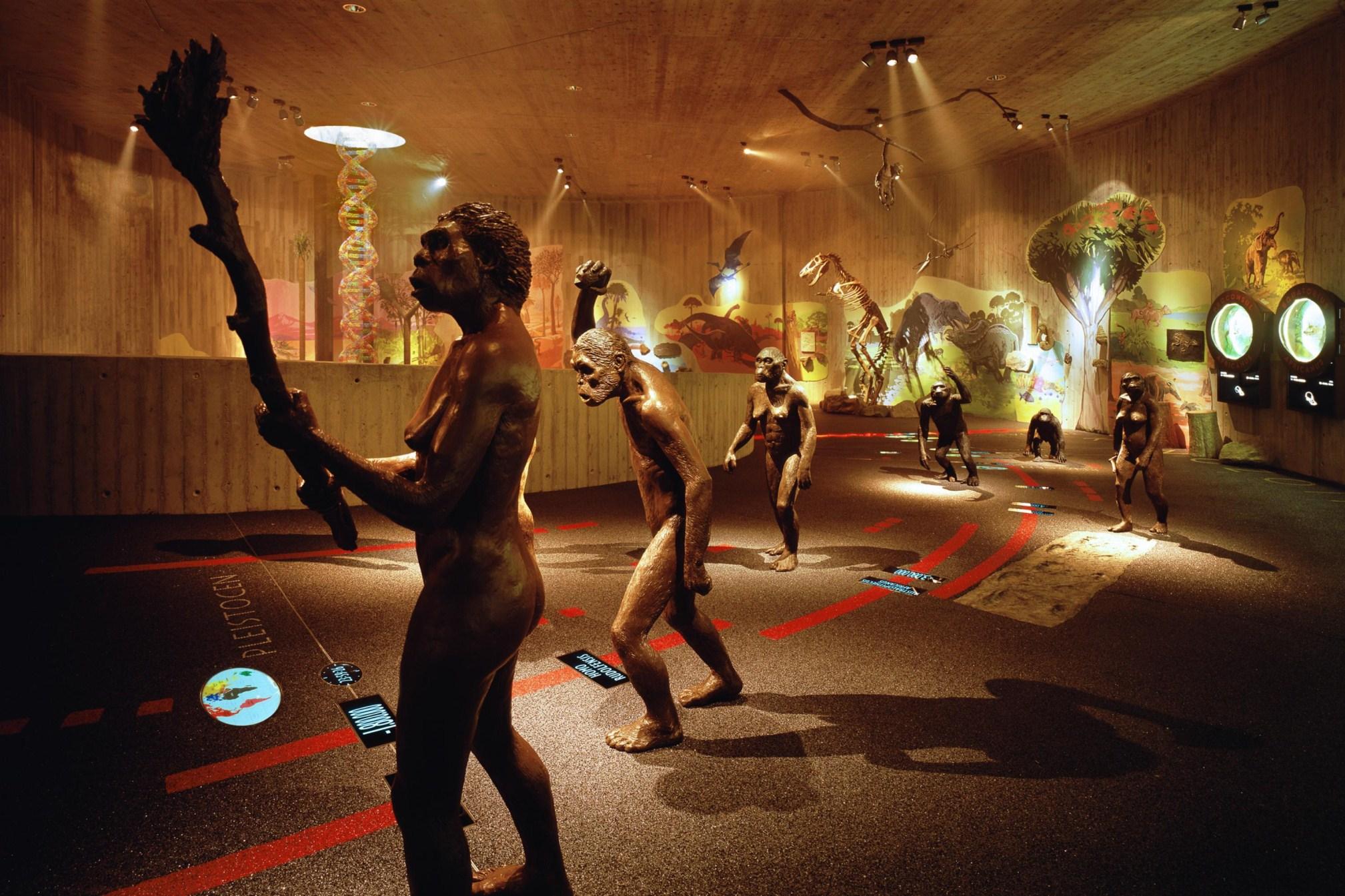 Pračovjek na korak od baroka: Muzej krapinskog neandertalca