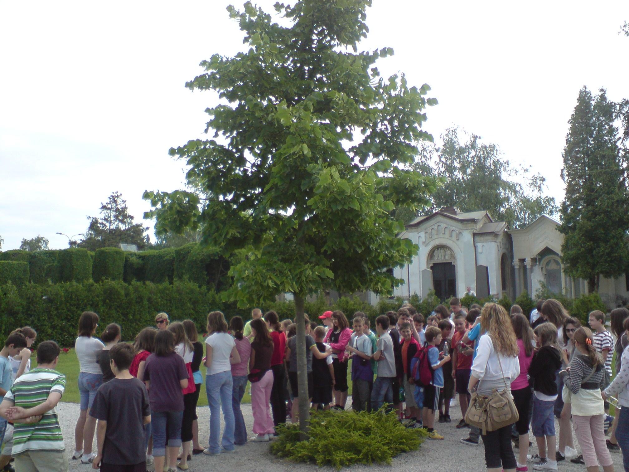 Pračovjek na korak od baroka: Varaždin: Varaždinsko groblje