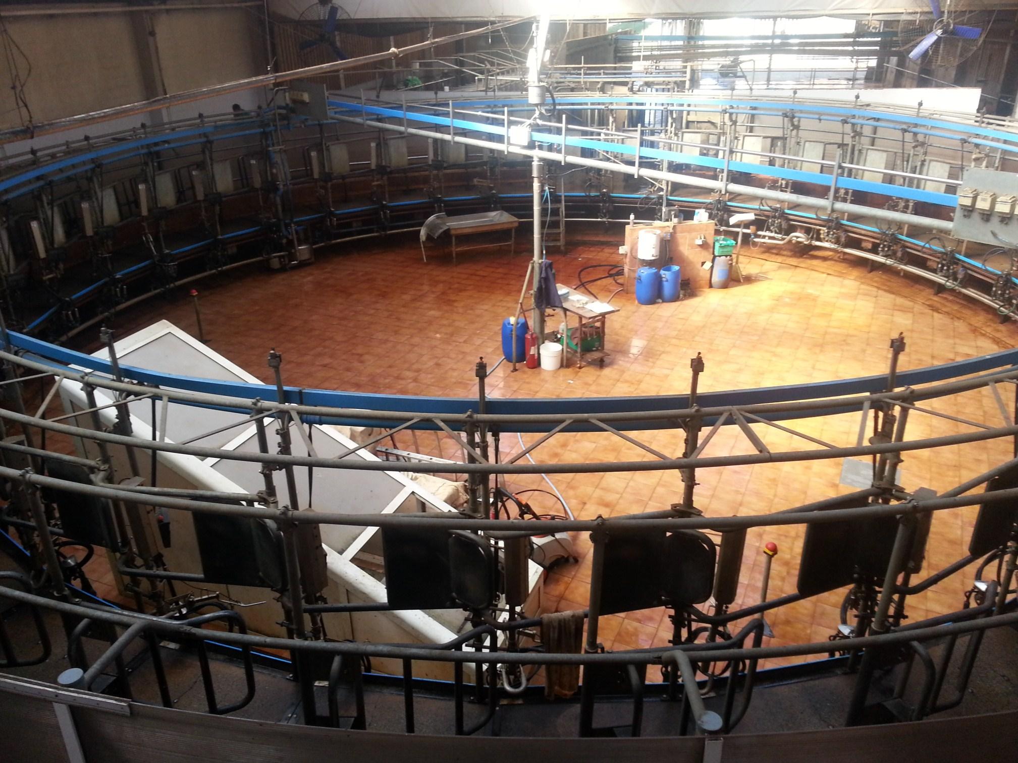 Kako se proizvodi hrana?: Farma Osilovac i mužnja krava