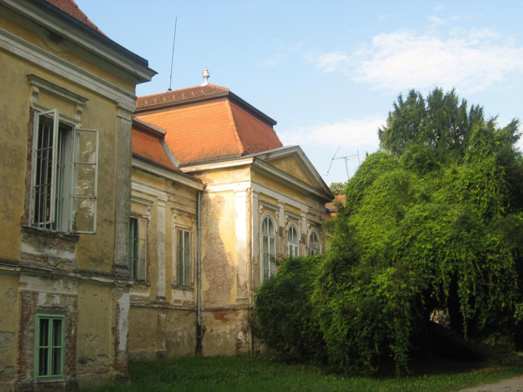 Slavonski plemići i najljepši dvorci Slavonije: Našice: Dvorac Marka Pejačevića