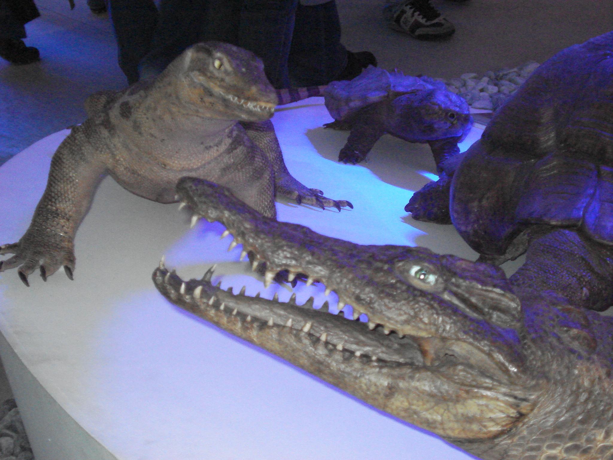 Zagreb kroz biologiju: Hrvatski prirodoslovni muzej