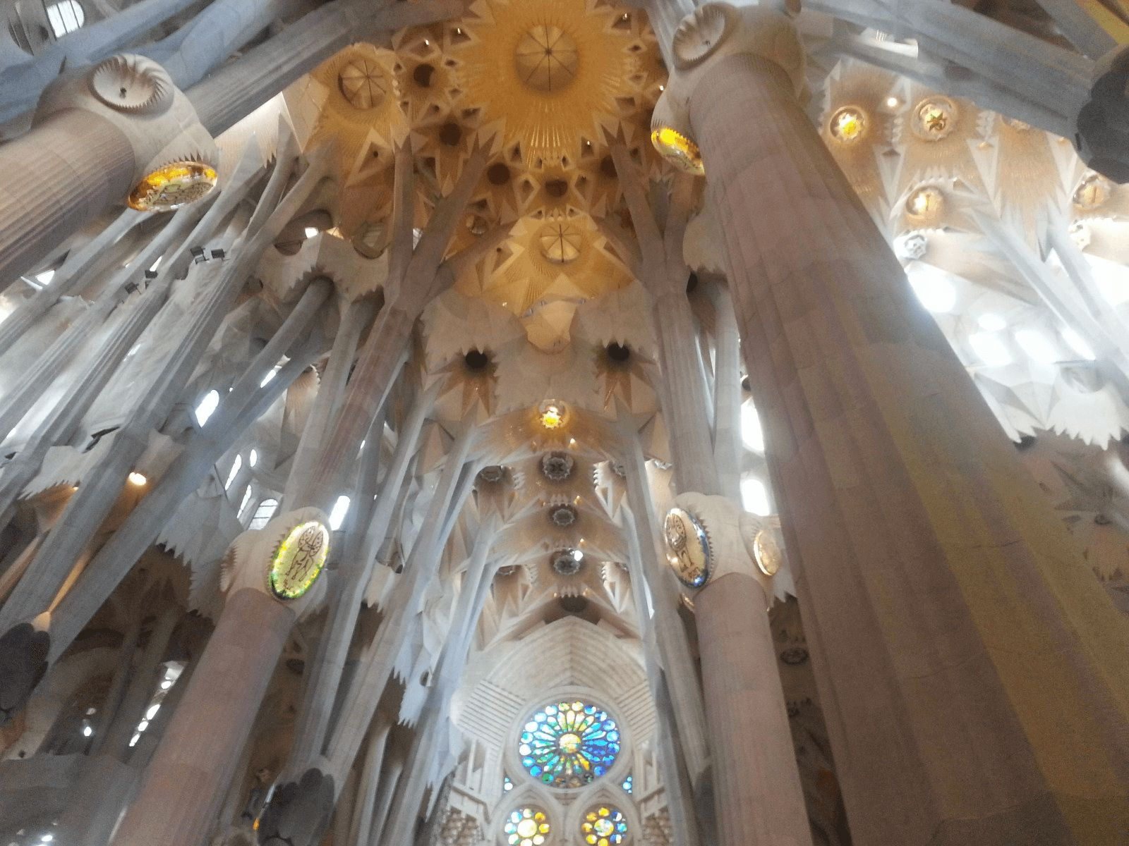 Španjolska i Rim: Barcelona: Sagrada Familia