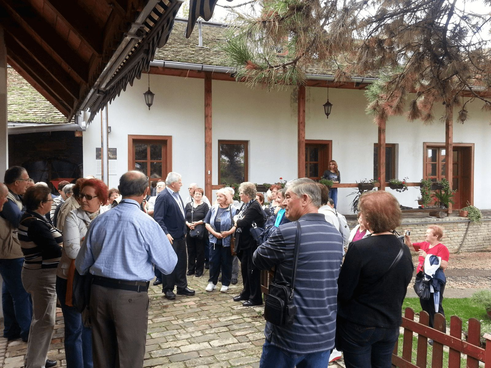 Beograd i Vojvodina: Sremski Karlovci: Muzej meda i vinarija Živanović