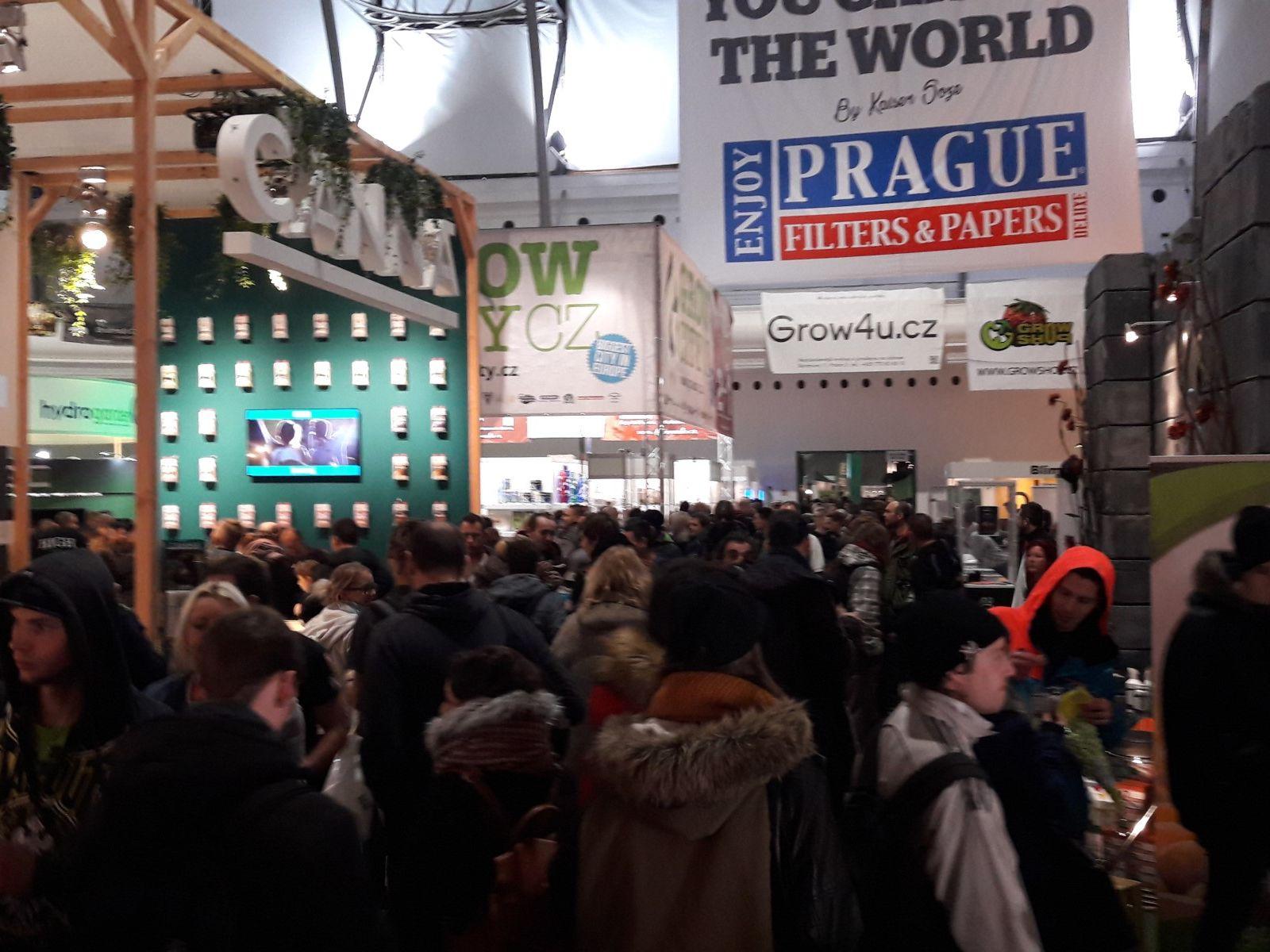 Putovanje Cannafest Prag 2018.: CANNAFEST: Ulaz bez redova