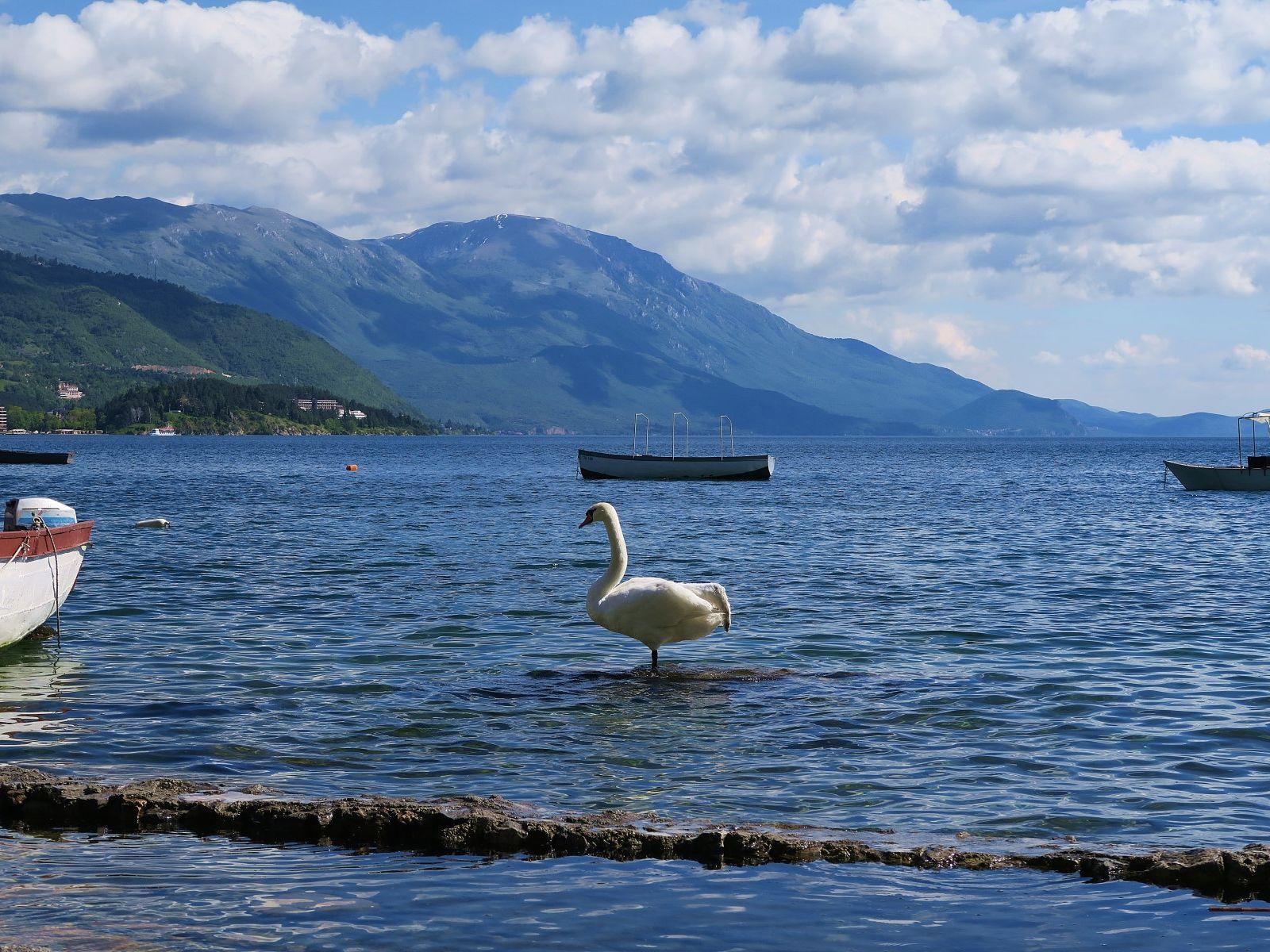OHRID SPRING BREAK - First minute: Ohridsko jezero